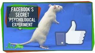 Facebook's Secret Psychological Experiment