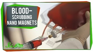 Blood Scrubbing Nano Magnets