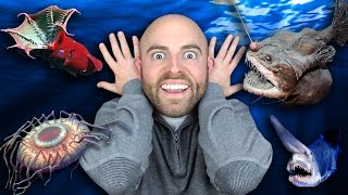 10 STRANGEST Deep Sea Creatures Ever Discovered!