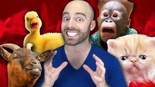 10 Adorable Animals that can KILL YOU!