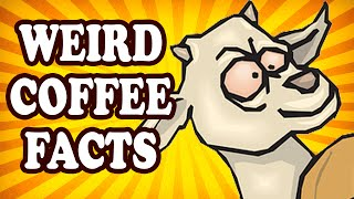 Top 10 Weird Facts About Coffee — TopTenzNet