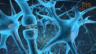 The Neurochemistry of Flow States, with Steven Kotler