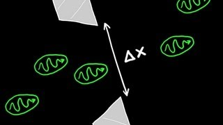 Heisenberg's Uncertainty Principle Explained