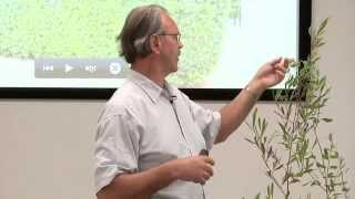 "Tom Ogren: ""Optimize an Allergy Fighting Landscape"" 