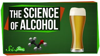 The Science of Alcohol: From Beer to Bourbon