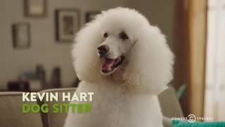 "Kevin Hart Calls Out a Snobby Dog - ""The Secret Life of Pets"""