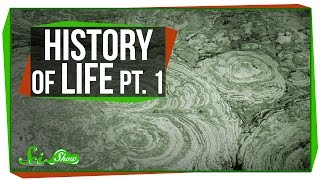 A Brief History of Life, Part 1: The Archean and the Proterozoic