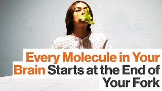 Optimize Your Brain: The Science of Smarter Eating   Dr. Drew Ramsey