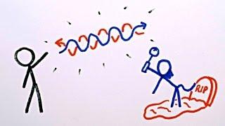 2012 Nobel Prize: How Do We See Light?