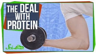 The Deal with Protein