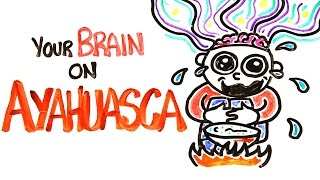 Your Brain On Ayahuasca: The Hallucinogenic Drug