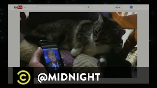 Cats Hate Donald Trump - @midnight with Chris Hardwick