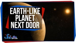 Breaking News: There's an Earth-like Planet Next Door!