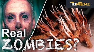 Top 10 SHOCKING Real Theories About ZOMBIES