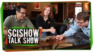 All About Poop, Plus a Tortoise: SciShow Talk Show #15