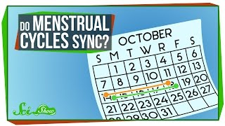 Do Menstrual Cycles Really Sync Up?