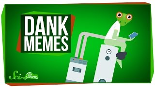 The Science of Dank Memes