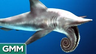 5 Craziest Looking Prehistoric Creatures | RANKED