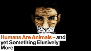Humans Are Animals — Yet Crucially We Are Something More   T.C. Boyle