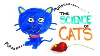 The Science of Cats
