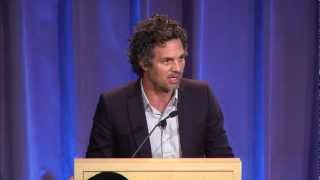 "Mark Ruffalo, Marco Krapels, & Mark Z. Jacobson: ""Power the World with Wind, Water and Sunlight"""