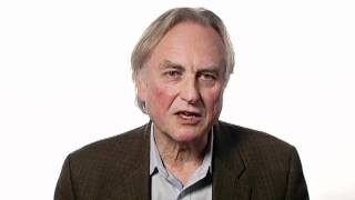 Richard Dawkins: Imagining a World Without God