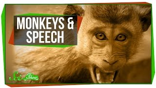 Why Can't Monkeys Talk Like Us?