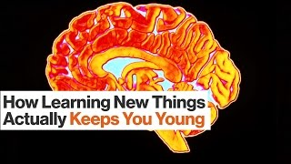 The Science of Brain Health and Cognitive Decline   Eric Kandel