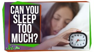 Can You Get Too Much Sleep?