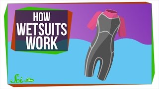 How Do Wetsuits Keep You Warm?