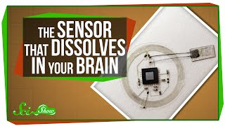 The Sensor That Dissolves in Your Brain