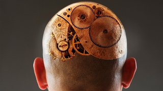 How Human Consciousness Evolved   Daniel Dennett