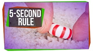 Is the Five-Second Rule Real?