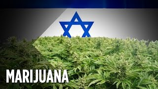 Israel's Push To Decriminalize Marijuana