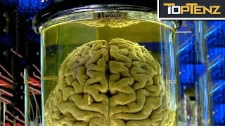 Top 10 Most Famous THOUGHT EXPERIMENTS