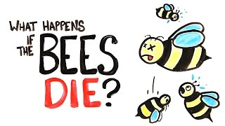 What Happens If All The Bees Die?