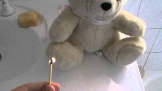 How To Light a Teddy Bear On Fire