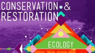 Conservation and Restoration Ecology: Crash Course Ecology #12