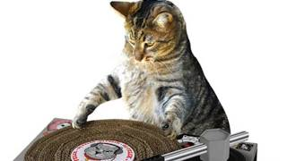 MAKE YOUR CAT A DJ -- and more! LÜT #18