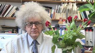 Chocolate & Roses (now in HD) - Periodic Table of Videos
