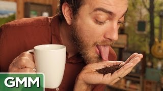 Cat Poop Coffee Taste Test