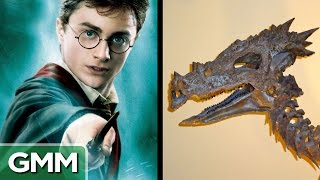 5 Dinosaurs Named After Famous People