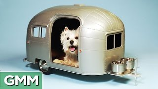 17 Extreme Pet Homes