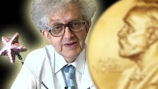 Chemistry Nobel Prize 2013 - Periodic Table of Videos