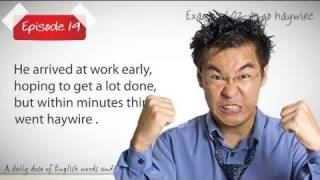 Daily Video Vocabulary Episode 19  - To go hay wire ( Free English Lessons)