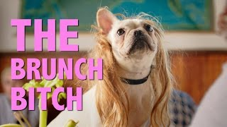 The Brunch Bitch