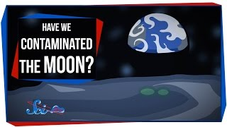 Have We Contaminated the Moon?