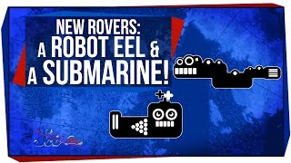 New Rovers: A Robot Eel and a Submarine!