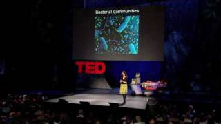 Bonnie Bassler: The secret, social lives of bacteria