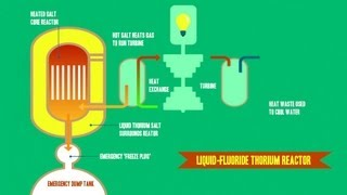 Liquid Fluoride Thorium Reactors (LFTR): Energy for the Future?